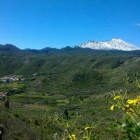 Teneriffa Finca Palo alto Dorf